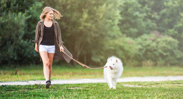 woman walking her dog in a park